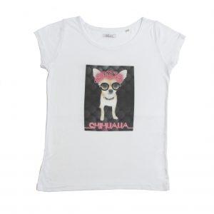 ropa vegana - camiseta algodón orgánico perro